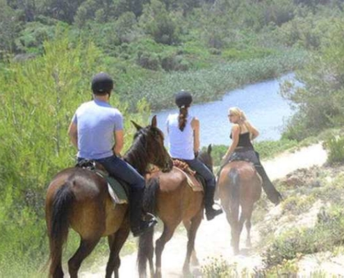 Santa Ponsa horse back riding