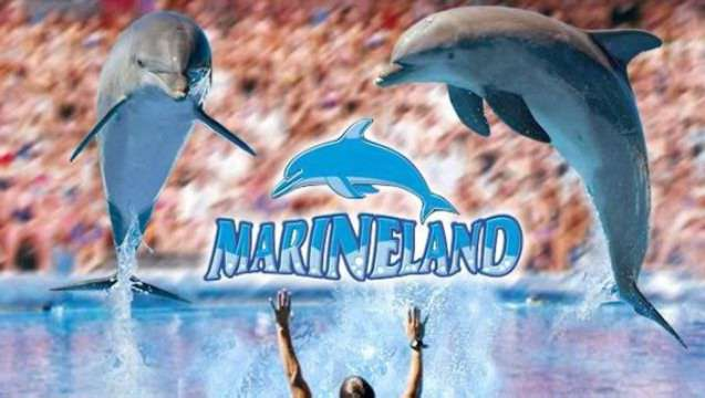 Theme Parks in Samta Ponsa - Marineland